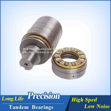 F-53507 twin screw extruder gearbox bearings