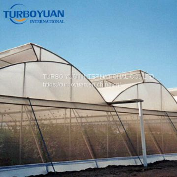 greenhouse fruit anti insect proof netting 40 mesh