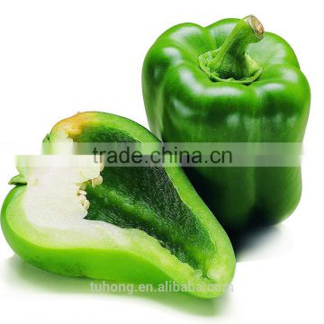 6247e00955e4 Non-edible Vegatable Seed For Planting Hybrid Bell Pepper Seed of pepper  seed from China Suppliers - 137818143