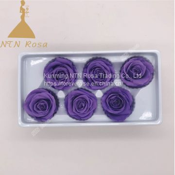 Factory Supply Wholesale A GRADE Best Quality China Preserved Roses