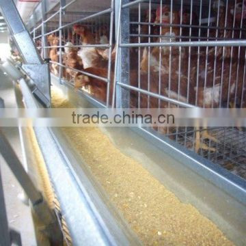 chicken farm building broiler poultry farm house design chicken