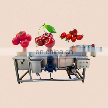 companies looking for distribute chili cabbage lettuce fruit vegetable cleaning machine