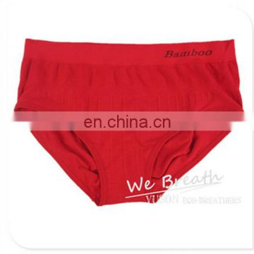Seamless Bamboo Underwear Brief Strips Women Full Cover Style