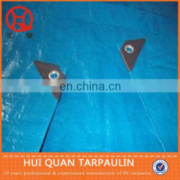 Clear green pe tarpaulin agricultural ground cover