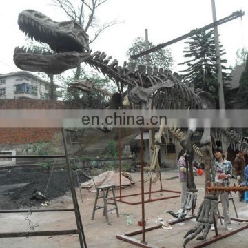 2015 Dinosaur skeleton model for dinosaur park for kid