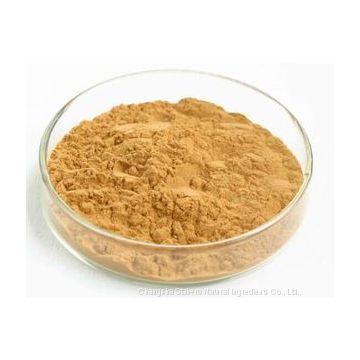 Honeysuckle Flowers Chlorogenic Acid Extract Light Yellow Powder