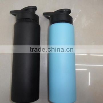 Custom Stainless Steel Bottle/Travel Sports Bottle