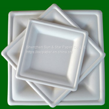 Square Plate 26x26cm in an array of shapes and sizes eco-friendly compostable plate