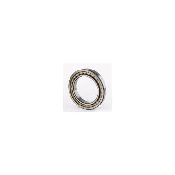 SKF NJ 202 cylindrical roller bearing