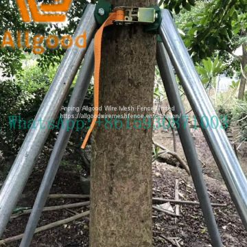 galvanized steel tree support systerm metal tree bracing
