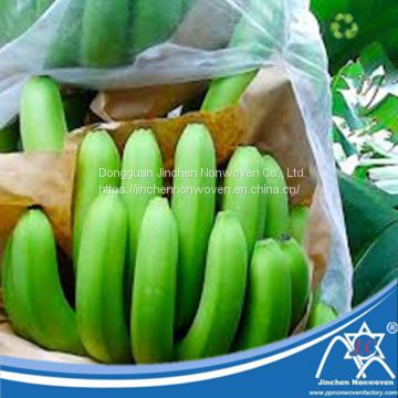 Anti-UV Harmless PP Non-Woven Fruit Bag