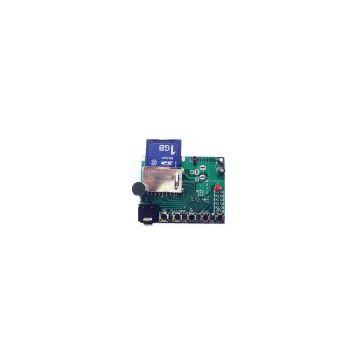 Digital voice recorder-WTR010-SD recording module/ ic