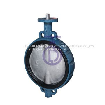 butterfly Valve with Painting CBF02-TA07
