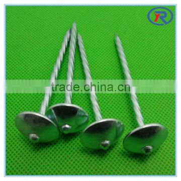 low carbon steel Assembled roofing nail with rubber washer made in china