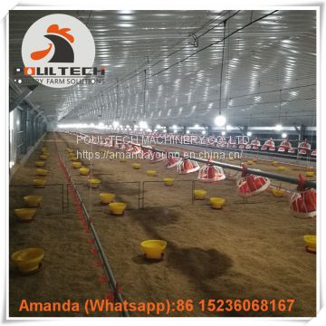 Yemen Layer Farm & Poultry Farm Equipment Broiler Floor Raising System & Chicken Deep Litter System with Automatic Drinking & Feeding Pan System in Chicken Coop