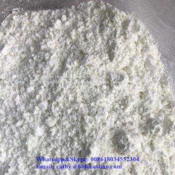 CAS 99918-43-1 FACTORY SUPPLY HIGH PURE 99.6% White Powder N-PHENYLPIPERIDIN-4-AMINE DIHYDROCHLORIDE
