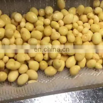 Radish Cassava Cleaner Carrot Washing Machine /potato washer cleaner for sale