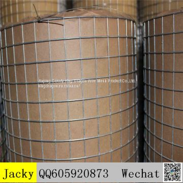 Hot Dipped Galvanized welded mesh,good quality,good price