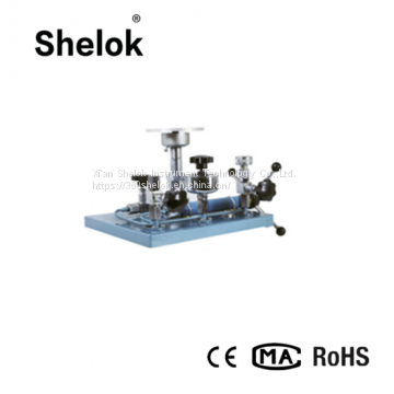 Standard universal piston dead weight testing device