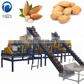 Taizy Almond Grading Machine Sorting Machine/Cashew Nut Grading Machine