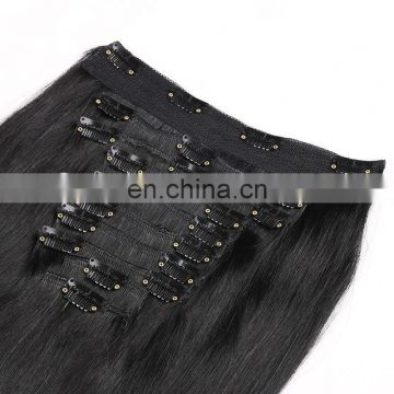 distributors wanted wholesale 30 inch human hair extensions clip in