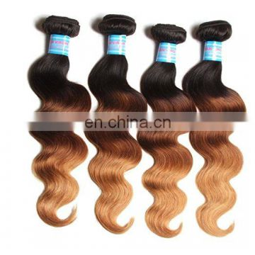 Mink brazilian hair 1b 27 ombre color hair