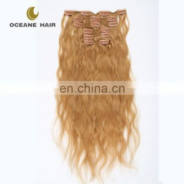 full head double drawn indian clip in hair extensions free sample