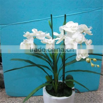 2017 GZ high quality colorful plastic orchid flower factory for office decoration artificial orchid