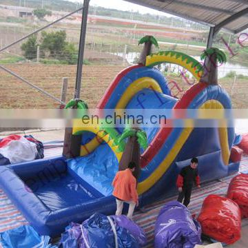 The most popular inflatable toys for sale WS031