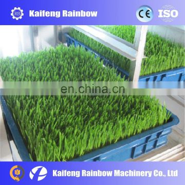 Professional industrial Automatic mung sprout making machine