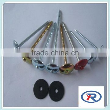 china Colour painted Umbrella Head Roofing Nails With rubber washer